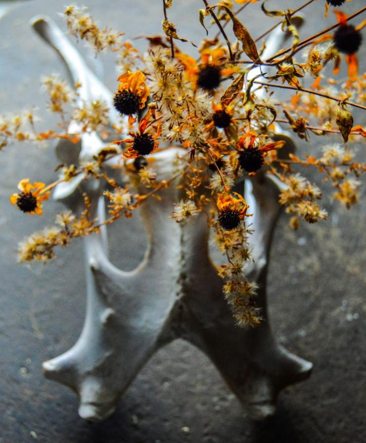 flowerknowledge