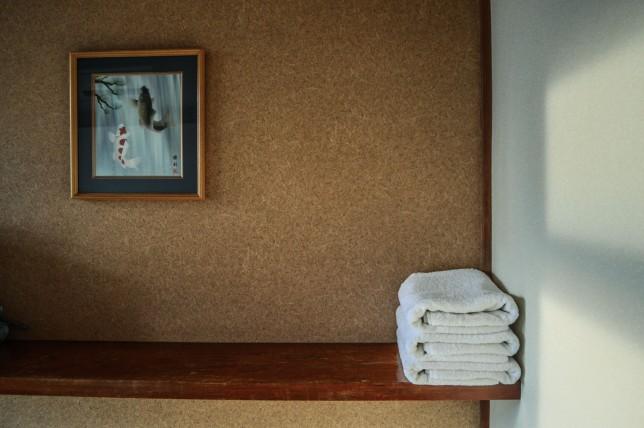 towelskoi
