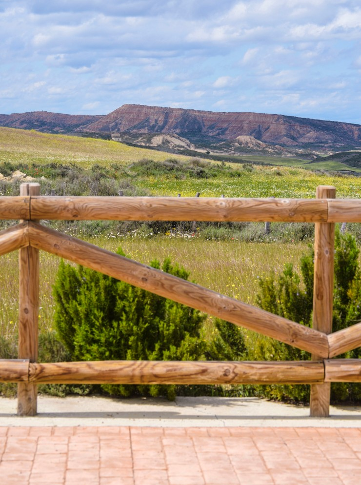 woodenfenceflowerscape